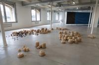 Installation évolutive en agar-agar